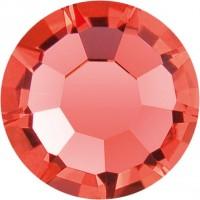 Maxima Rose ss12 Padparadscha F (90350)
