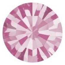 Maxima Chaton ss39 Rose F