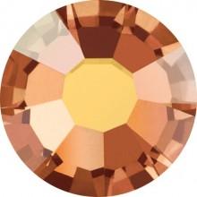 Maxima Rose ss5 Crystal Sunrise F